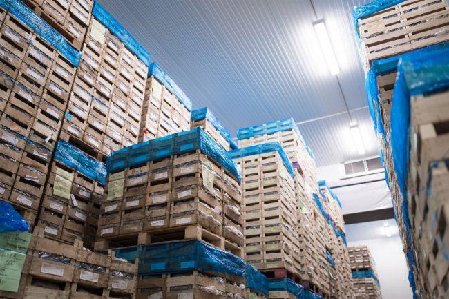airclima cuppen logistics