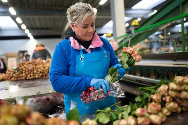 Bouquetnet Aalsmeer