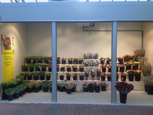 Ranzijn tuin & dier - Alkmaar